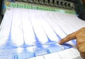 sismografo_dito