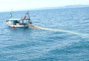 barca-pesca-a-strascico