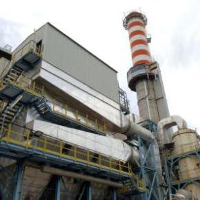_inceneritore_biomasse