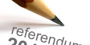 referendum-2011-300x1501
