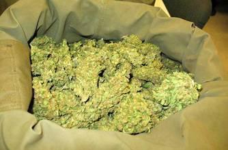marijuana_jpg_871977061