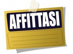 affitto_case