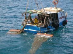 pesca-reti-3-info