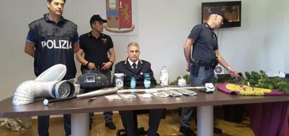 Droga: sequestro centrale spaccio e produzione di marijuana a Jesi